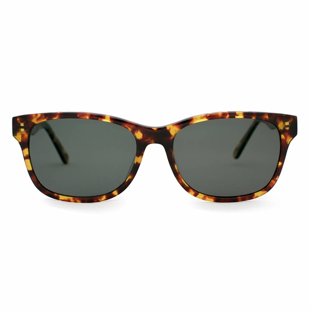 Polarized Acetate Sunglasses | Windemere Tortoise | Parkman