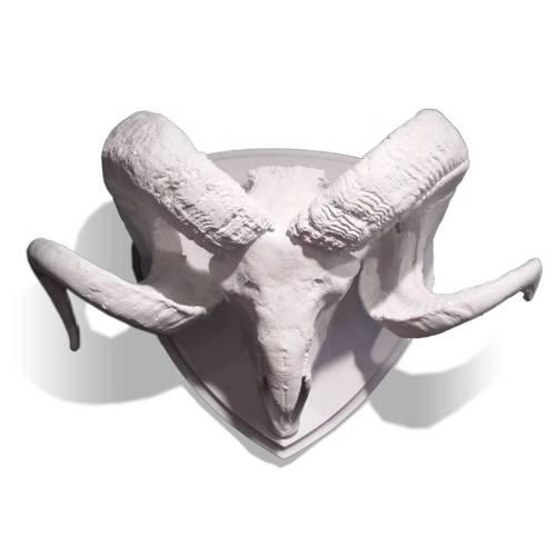 Ram Skull with Horns on Medallion