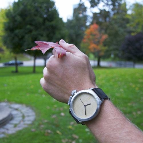 Seaval - Genuine Watches with Natural Strength
