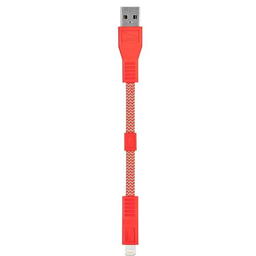 Lighting USB Cable 6 in