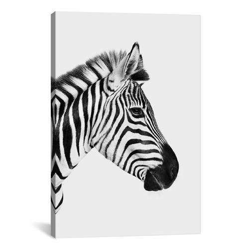 Zebra Profile I In B&W